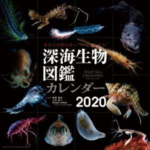 2020年深海生物図鑑カレンダー premium-pony
