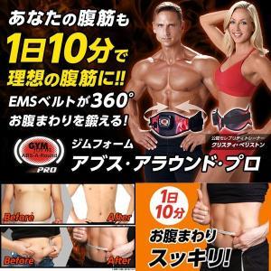 ビキャクジェル付!360°EMSアブス・アラウンドPRO (EMSベルト,腹筋ベルト,微電流,筋肉刺激,EMS運動,プロ,腹筋,背筋,脇腹,最安値,ウエスト,運動,トレーニング)|premium-pony