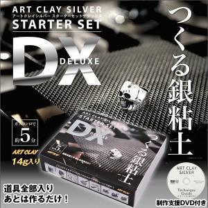 アートクレイシルバースターターセットDX(銀粘土 14g 純銀99.9% 焼成 手作り オリジナル アクセサリー コンロで5分 DVD レシピ 道具全部入り)|premium-pony