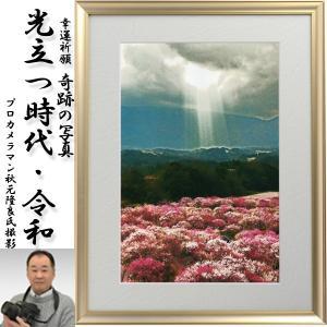 幸運祈願・奇跡の写真「光立つ時代・令和」(縁起の良い写真 パワーフォト 開運 秋元隆良 新元号 改元 れいわ 開運 金運 銀塩写真)|premium-pony