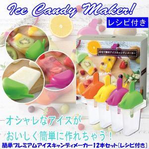 簡単プレミアムアイスキャンディメーカー12本セット「レシピ付き」 (アイスクリーム,フルーツ,ジュース,SNS,自宅で簡単,おしゃれ) premium-pony