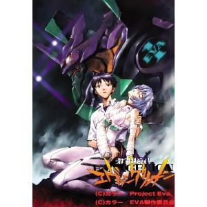 新世紀エヴァンゲリオン TV放映版 DVD-BOX【ARCH...