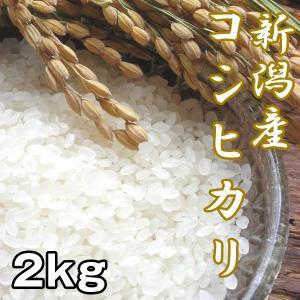 新潟産コシヒカリ2kg (お米,こしひかり,新米,お取り寄せブランド米,人気日本一,米処,新潟県産,受注後精米) premium-pony