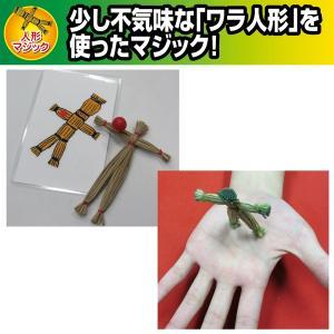 ブードゥー・ワークス/解説DVD付き(手品,マジック,藁人形,予言)|premium-pony
