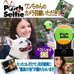 ワンちゃんベストショット「プーチセルフィー」( ペット カメラ ボール カメラ目線 スマホ アタッチメント 思い出 )|premium-pony
