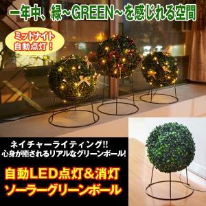 自動LED点灯&消灯ソーラーグリーンボール[1点] (LEDイルミネーションライト,観葉植物,緑,グリーン,充電,防滴仕様,ライティング|premium-pony