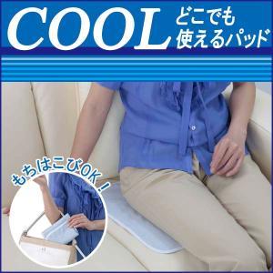 清涼どこでもパッド 価格 クールでドライな清涼どこでもパッド 汗じみ 汗取りパッド 暑さ対策 爽快 ゆうパケット便170円 日本製|pricewars