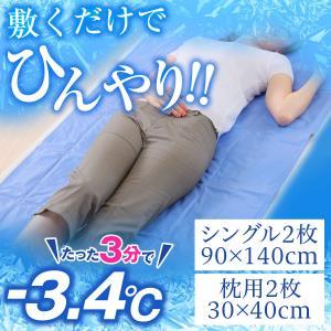 白くまきぶん 流氷マット シングル 2枚組+枕用 2枚組セット 90x140cm  30x40cm