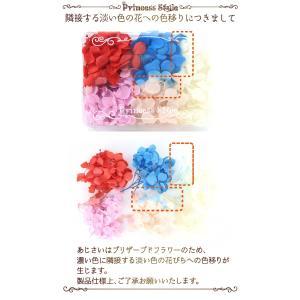 あじさい かすみ草 小分け プリザーブドフラワー ドライフラワー ハーバリウム 花材 セット|princess-factory|02