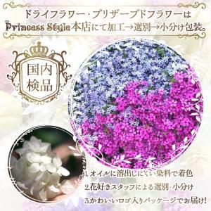 かすみ草 ドライフラワー 小分け ハーバリウム 花材 ブルー レッド パープル等 濃い色 6色/セット|princess-factory|06