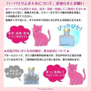 ハーバリウム用ボトル 日本製 ガラス瓶 大 四...の詳細画像5