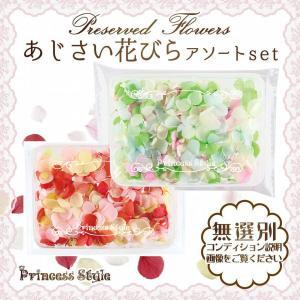 あじさい 花びら プリザーブドフラワー 花材 アソートセット|princess-factory