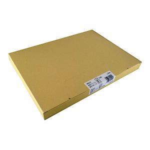 A4和紙ファイル 鳥の子 自然色 50枚/箱 DW302 長井紙業|printry