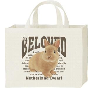 ネザーランド ドワーフ(兔)うさぎ(ペット シリーズ)/キャンバスバッグ・スクエア カレッジバッグ prints