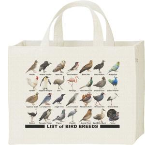 キャンバスバッグ・スクエア 鳥のリスト カレッジバッグ|prints