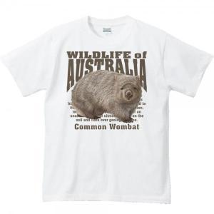 ヒメ ウォンバット(オーストラリアの生物)/半袖Tシャツ  |prints