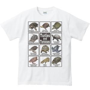 カメ大好き!/半袖Tシャツ|prints