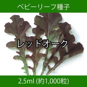 ベビーリーフ種子 B-02 レッドオーク 2.5ml|printstudio-jp