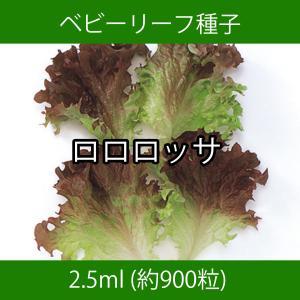 ベビーリーフ種子 B-10 ロロロッサ 2.5ml|printstudio-jp