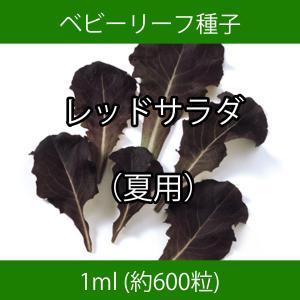 ベビーリーフ種子 B-15 レッドサラダ(夏用)|printstudio-jp