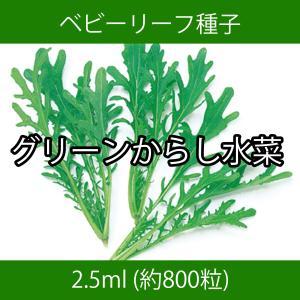 ベビーリーフ種子 B-21 グリーンからし水菜 2.5ml|printstudio-jp