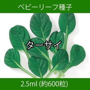ベビーリーフ種子 B-26 ターサイ 2.5ml printstudio-jp
