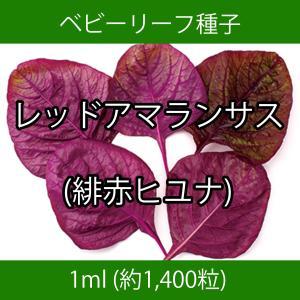 ベビーリーフ種子 B-38 レッドアマランサス(緋赤ヒユナ) 1ml printstudio-jp