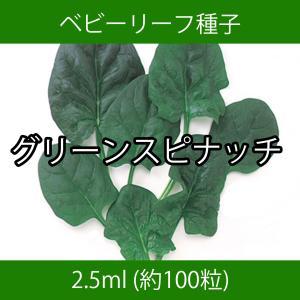 ベビーリーフ種子 B-39 グリーンスピナッチ 5ml printstudio-jp