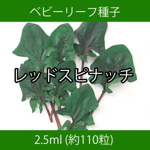 ベビーリーフ種子 B-41 レッドスピナッチ 2.5ml printstudio-jp