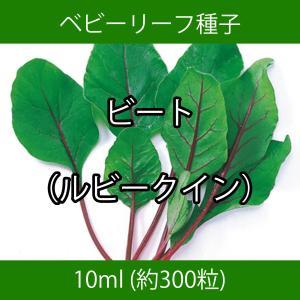ベビーリーフ種子 B-45 ビート(ルビークイン) 10ml|printstudio-jp
