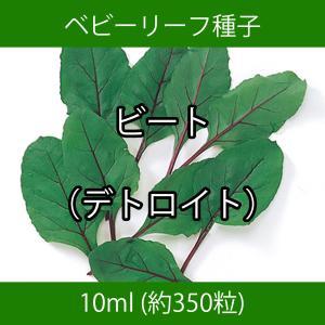 ベビーリーフ種子 B-46 ビート(デトロイト) 10ml printstudio-jp
