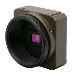 ワテック WAT-01U2 超小型カラーカメラ FULL HD対応 USB2.0 【送料無料】|pro-tecta-shop
