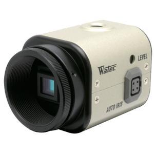 ワテック WAT-250D2 38万画素 小型高感度カラーカメラ 【送料無料】|pro-tecta-shop