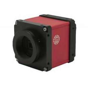 ワテック WAT-2200Mk-2 高感度3G/HD-SDIカラーカメラ 高精細ハイビジョンカラーカメラ(HD−SDI) 【送料無料】|pro-tecta-shop