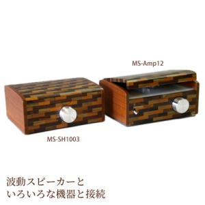 波動スピーカーアンプ+スイッチャーセット 波動スピーカーアンプ12+スイッチャーセット(1001用)送料無料 proactive-shop