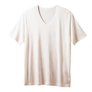 竹布 TAKEFU メンズ Vネック Tシャツ ネコポス 送料無料 たけふ インナー|proactive-shop