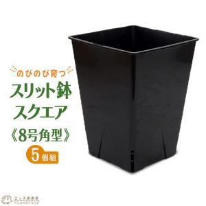 のびのび育つ 『 スリット鉢 スクエア 』 8号角型【5個セット】|produce87