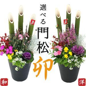 2個セット(一対)選べる門松『 お正月寄せ植え 』 正月飾り 門松アレンジ寄せ植え 7号鉢( 送料無料 )|produce87
