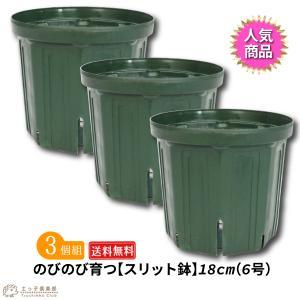 のびのび育つ『スリット鉢』 送料無料 18cm(6号) 3個セット produce87