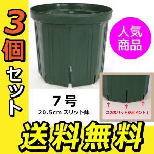 のびのび育つ 『 スリット鉢 』 20.5cm (7号) 送料無料 3個セット|produce87|02