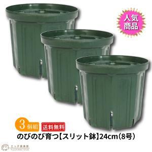 のびのび育つ 『 スリット鉢 』 24cm (8号) 送料無料 3個セット produce87