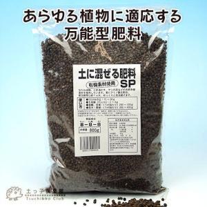 初雪かずら 9cmポット苗×10個 +肥料80...の詳細画像4