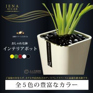 おしゃれな鉢 選べるカラー インテリアポット 鉢 8号サイズ JENA produce87