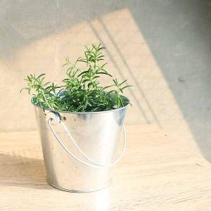 ハーブ好きのための簡単栽培ポット【種セット】 - ハーブ・園芸好きへ。すぐにはじめられる鉢と種の園芸セット-creapot|product-factory-jp