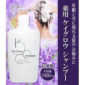 シャンプー 頭皮 髪 薄毛 薬用 ケイグロウ シャンプー お徳用 1000ml(詰替用)|profit