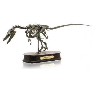 フィギュア 恐竜 プラモデル ダイナソー スケルトンモデル(DINOSAUR SKELETONMODEL) 恐竜 ヴェロキラプトル FDS606 profit