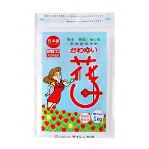 洗剤 マルチクリーナー 酵素系洗剤 かわゆい花子 1kg袋 パンフレット・スプーン付き profit