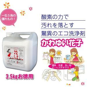洗剤 マルチクリーナー 粉末洗剤 酸素系多目的洗剤 花子 3.5kgお徳用 profit