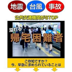 防災 防災用品 簡便エアーマット まくら機能有り profit 02