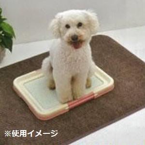 ディスメル・銀世界使用 ペットトイレきれい好きマット 100cm×70cm ペットのいるお部屋の臭い対策に!!|profit
